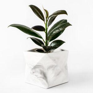 Palua Large White Marble Plant1